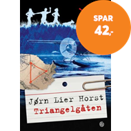 Produktbilde for Triangelgåten (BOK)