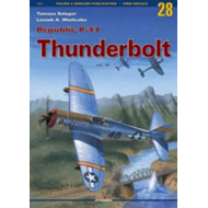 Republic P-47 Thunderbolt (BOK)
