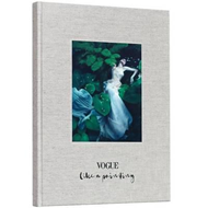 Vogue: Like a Painting (BOK)