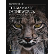 Handbook of Mammals of the World, Vol 1 - Carnivores (BOK)