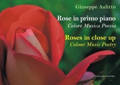 Roses in Close Up: Colour Music Poetry (BOK)