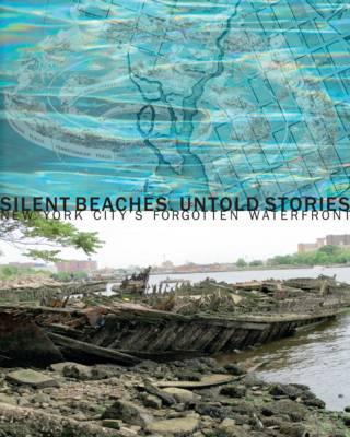 Silent Beaches Untold Stories (BOK)