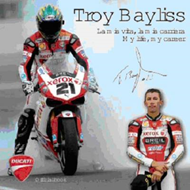 Troy Bayliss (BOK)