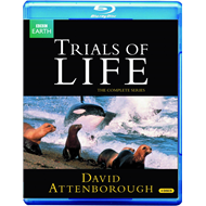Trials Of Life (UK-import) (BLU-RAY)
