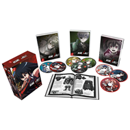 Akame Ga Kill! - Collection 2: Deluxe Collectors Edition (UK-import) (BLU-RAY)