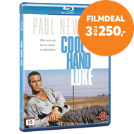Produktbilde for Cool Hand Luke (1967) / Rebell I Lenker (DK-import) (BLU-RAY)