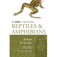 Reptiles and Amphibians of Britain and Europe (BOK)