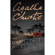 Unexpected Guest (BOK)
