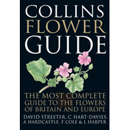 Produktbilde for Collins Flower Guide (BOK)