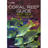 Coral Reef Guide Red Sea (BOK)