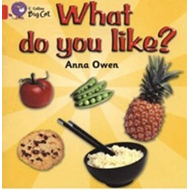What Do You Like?: Band 02b/Red B (BOK)