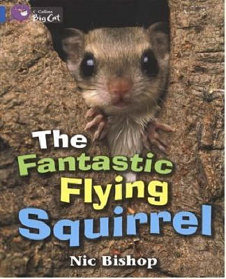 The Fantastic Flying Squirrel: Blue/Band 04 (BOK)