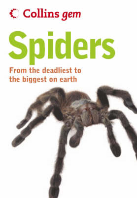 Spiders (BOK)