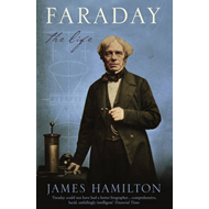 Faraday: The Life (BOK)