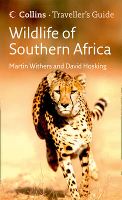 Wildlife of Southern Africa (BOK)