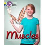 Muscles: Yellow/Sapphire (BOK)