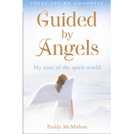 Guided by Angels (BOK)