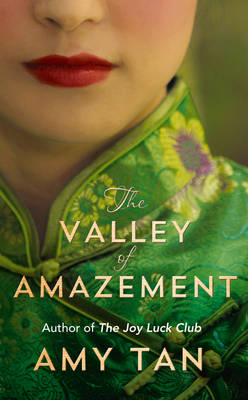 The Valley of Amazement (BOK)