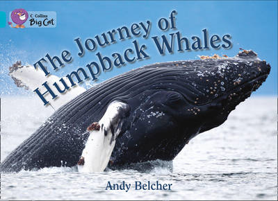 The Journey of Humpback Whales: Turquoise/Band 7 (BOK)