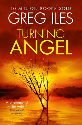 Turning Angel (BOK)