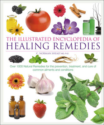 Healing Remedies Over 1000 Natural Remed (BOK)