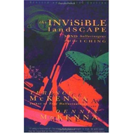 Invisible Landscape (BOK)