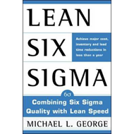 Lean Six Sigma (BOK)