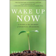 Wake Up Now: A Guide to the Journey of Spiritual Awakening (BOK)