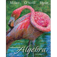 Intermediate Algebra (BOK)