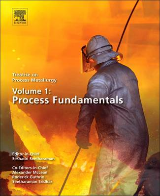 Metallurgical Process Science (BOK)