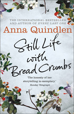 Still Life with Bread Crumbs (BOK)