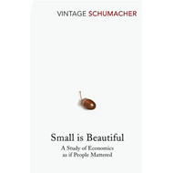 Small Is Beautiful (BOK)