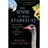 Sense of Being Stared at (BOK)