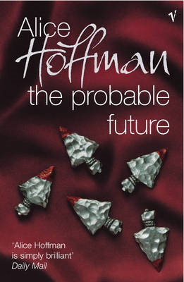 The Probable Future (BOK)
