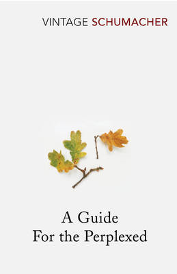 Guide For The Perplexed (BOK)