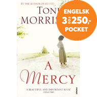 Produktbilde for Mercy (BOK)