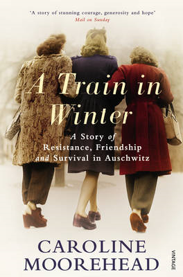 Train in Winter (BOK)