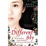 A Different Sky (BOK)