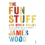 Fun Stuff and Other Essays (BOK)