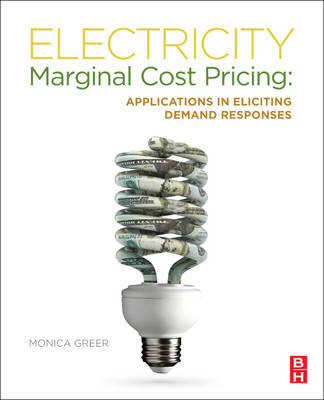Electricity Marginal Cost Pricing: Applications in Eliciting Demand Responses (BOK)