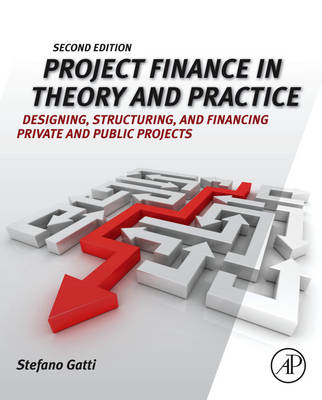 Project Finance in Theory and Practice (BOK)