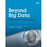 Beyond Big Data (BOK)