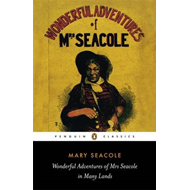 Wonderful Adventures of Mrs Seacole in Many Lands (BOK)