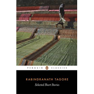 Selected Short Stories (BOK)