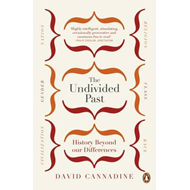 Undivided Past (BOK)