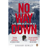 Produktbilde for No Way Down (BOK)