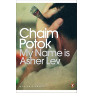 My Name is Asher Lev (BOK)