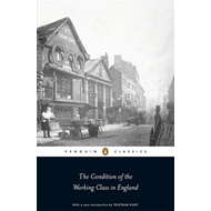 The Condition of the Working Class in England (BOK)