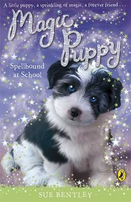 Spellbound at School (BOK)