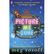 Picture me gone (BOK)